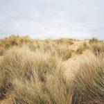 camber sands beach, beach, uk beach