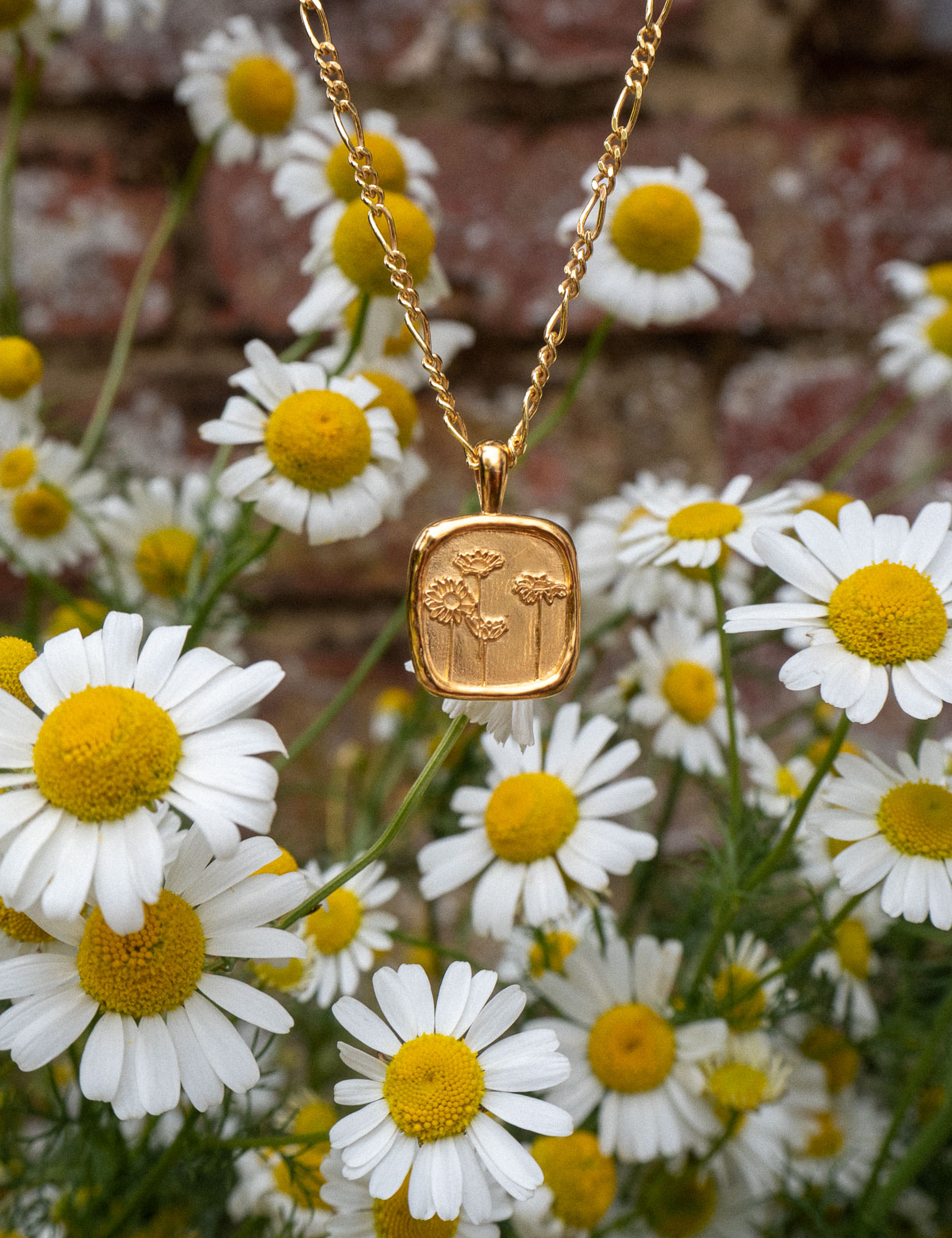 daisy jewellery, floral necklace, floral jewellery, necklace, gold necklace affordable jewellery, flower jewellery